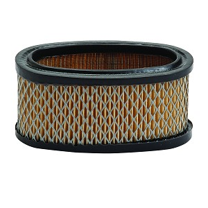 Air Filter For Briggs & Stratton  # 393725