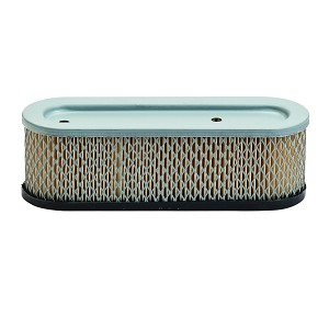 Air Filter For Briggs & Stratton  # 491519